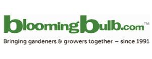 BloomingBulb.com-Return-Policy